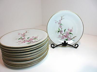 "11 Heinrich H&C Co SELB 7 3/4"" PLATES Pink Dogwood Blossoms Flowers GOLD TRIM"