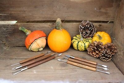 Professional 6 Piece Professional Carving Tool Set for fine and intricate work.