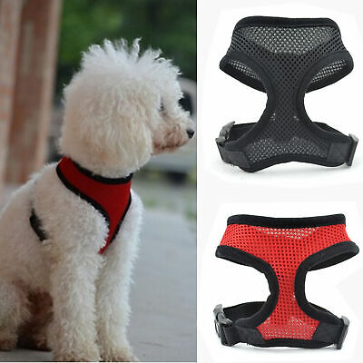 Pet Control Harness for Small Dog & Cat Soft Mesh Walk Collar Safety Strap Vest