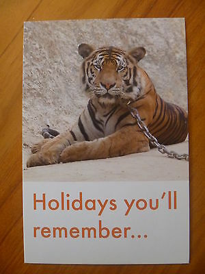 Postcard...chained Tiger...world Animal Protection....animal Cruelty...tigress