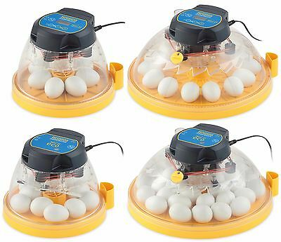 Mini or Maxi Manual-turn or Fully Advance Egg Incubators