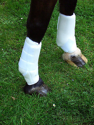 Sport Support Boot XL Horse White Slight Seconds better than half price