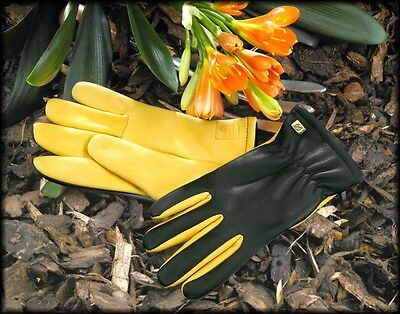 Gold Leaf Dry Touch Gardening Gloves - GENTS FIT