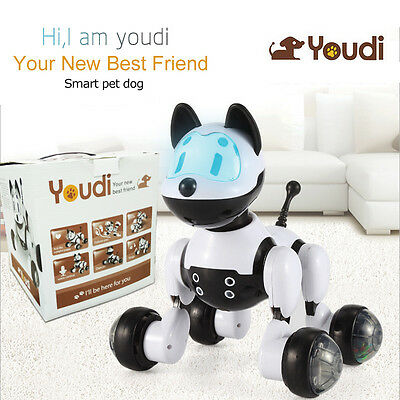 Intelligent Electronic Pet Toy Robot Dog Kids Walking Puppy Action Toys Kid Gift