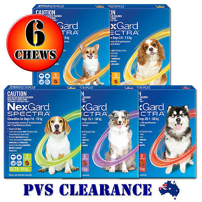 Nexgard Spectra 6 for All Size Dogs 6-Pack - Orange Yellow Green Purple Red