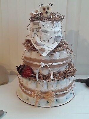 Welcome to My Nest  Diaper Cake