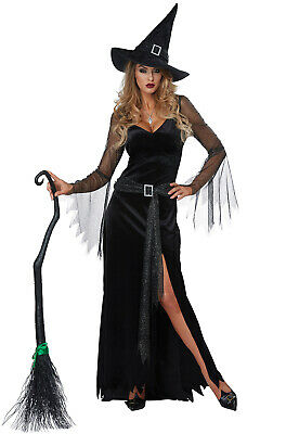 Brand New Rich Witch Women Adult Costume