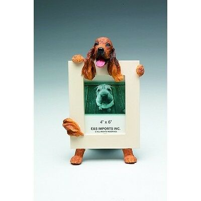 Irish Setter Dog Picture Photo Frame