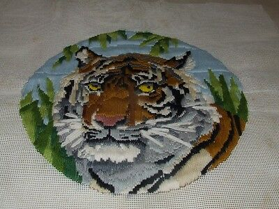 Long Stitch - Tiger - Completed