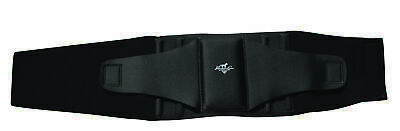Professional Choice Comfort Fit Low Back Support