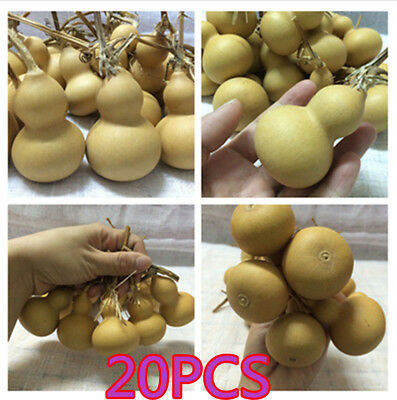 20pcs Natural Gourds Small Calabash Gourd Plant Little Gourd DIY Mascot