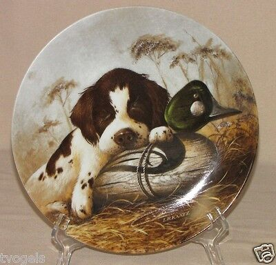 Vintage Knowles Dog Tired - The Springer Spaniel Lynn Kaatz Porcelain Plate