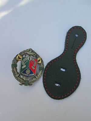 French Foreign Legion- Etrangere du 1 REC-CAVALERY-numbered,matricule-set badge