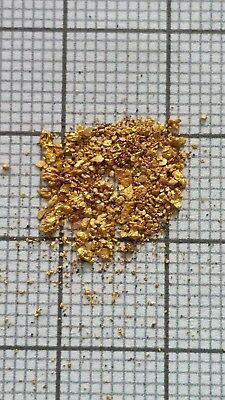 0,5 gramme d'or alluvionnaire - Gold flakes paillettes pépites d'or naturelle