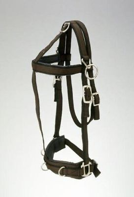 Performers 1st Choice Pro Nylon Training Halter - Full Size