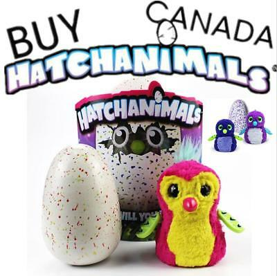 2017 Hatchimals Pengualas Draggles Owlicorn Gift 100% Genuine Sealed FAST POST