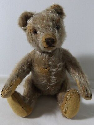 Small Old Steiff Teddy Bear 10 inches Very Handsome No Button