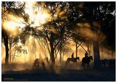 Horses.Cowboys at Dawn.High-Gloss. Photo-Quality. 230 gsm. Waterproof.Quality!