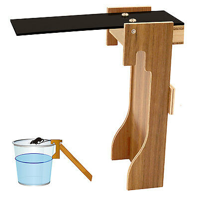 Plank Mouse Trap, Walk the Plank Automatic Rest Mouse Killer