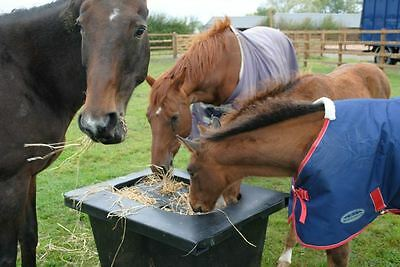 Slow Feeder - Horse Hay Saver- Horse Hay Feeder - Choice Colours FREE P&P