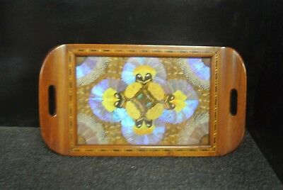 Old  Butterfly Art Wood Serving Tray Wood Inlay Border Iridescent  Glass Top