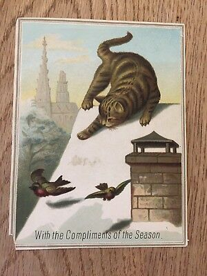 Victorian Greeting Card cat on snow roof with birds