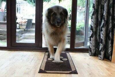 Pet Rebellion Stop Muddy Paws Barrier Rugs