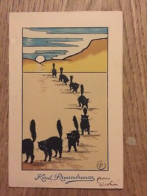Aged old Greeting Card Cats in sand
