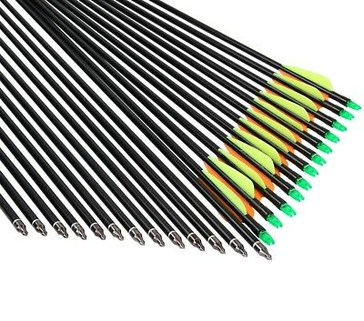 25pcs Fiberglass Fletched Arrows Compound Bow Hunt Target Practice Training AU