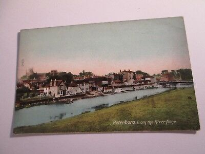 Postcard of Peterboro from the River Nene 15540 (Unposted)