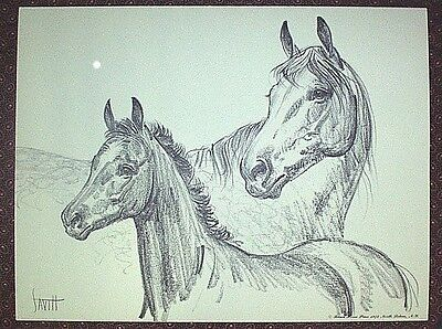 ARABIAN MARE AND FOAL Charcoal Print By Sam Savitt 1973 - Best Offer