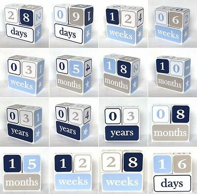 Baby Age Blocks / Milestone Blocks / Photo Props