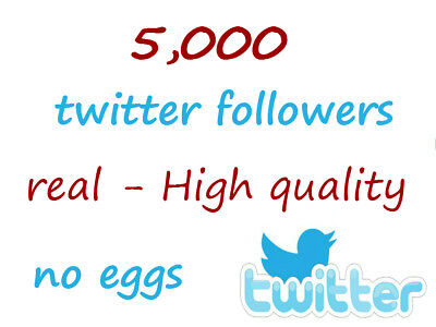 5K twitter-Follower Permanent and high Quality