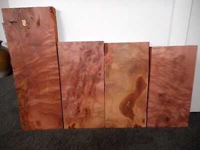 4 x Myrtle Offcuts