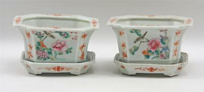 Very Fine Pair Antique Chinese Porcelain Pots w Saucers Polychrome Enamel Birds