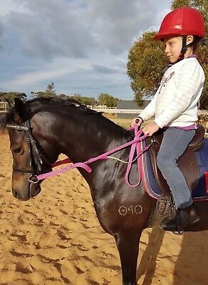 Contact Reins For Beginners ~Braided Cotton~Pony/Full Adjustable~Vibrant Colours