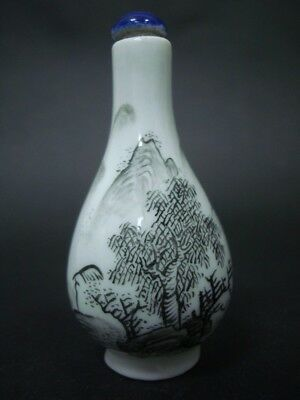 Fine Old Chinese Hand Painting Landscape Porcelain Snuff Bottle Signed