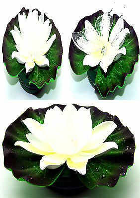 Colour Changing LED Floating Pond Lights / Lily Lights - Battery Operated 3xAAA