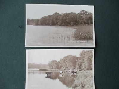 """2 Old Cards Of Fritton Lake """" 1 R.p Dated 1929, Other, With Cows, Earlier """""""