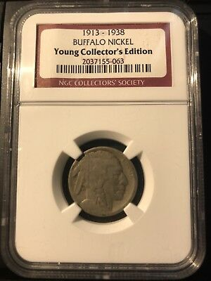 NGC Sample Buffalo Nickel Young Collector's Edition