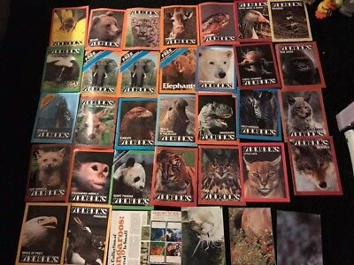 Zoobooks - Lot of 30+ vintage magazines &  posters