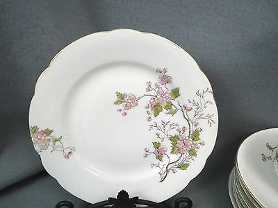 33 pc PB Imperial Karlsbad China Set PINK FLOWERS Branch Dogwood Apple Blossom