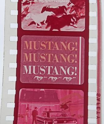 "1965 FORD ""MUSTANG—MUSTANG—MUSTANG"" original FILM STRIP pictures & specs! FoMoCo"