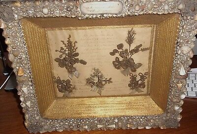 Stunning 1852 Victorian Mourning Shadow Box Hair Flowers Foilage Amazing Frame