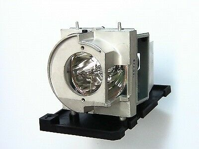 OEM BULB with Housing for OPTOMA EH319UST Projector with 180 Day Warranty