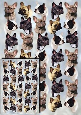 French Bulldog Gift Wrapping Paper By Starprint