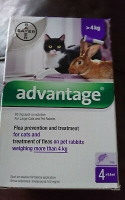 Advantage 80mg Spot-On Solution Treatment for Large Cats & Rabbits over 4kg New