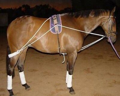 Horse Lunge Training System~ Helps Build Top Line & Engaging Hind Quarters SALE