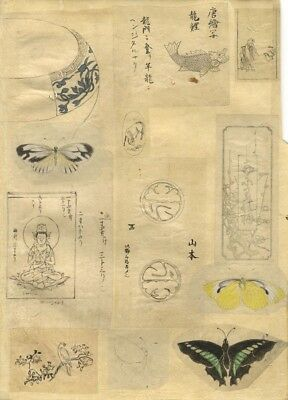 Studies of Butterflies, Fish - 19th-century Japanese watercolour painting