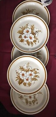 5 Mountain Wood Collection Plates